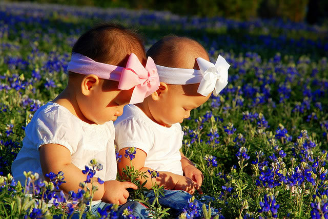 Twins in the Bluebonnets