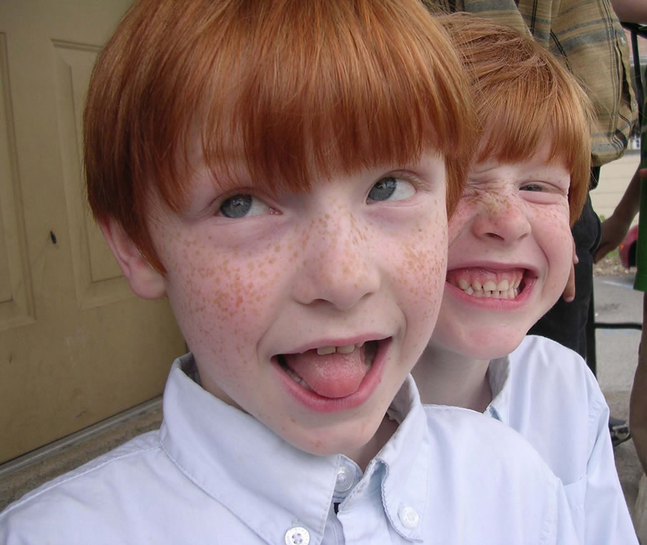 Ginger Twins