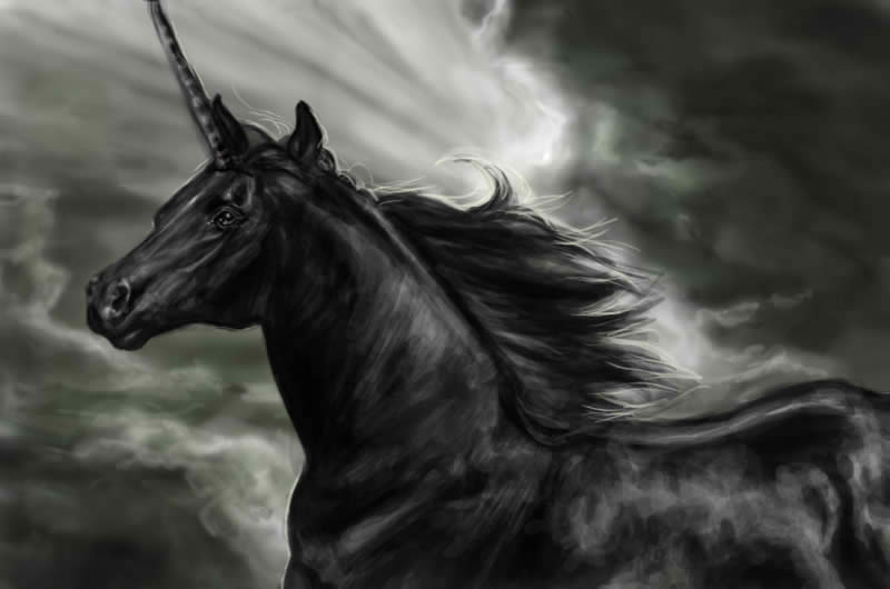 The Black Fresian Unicorn