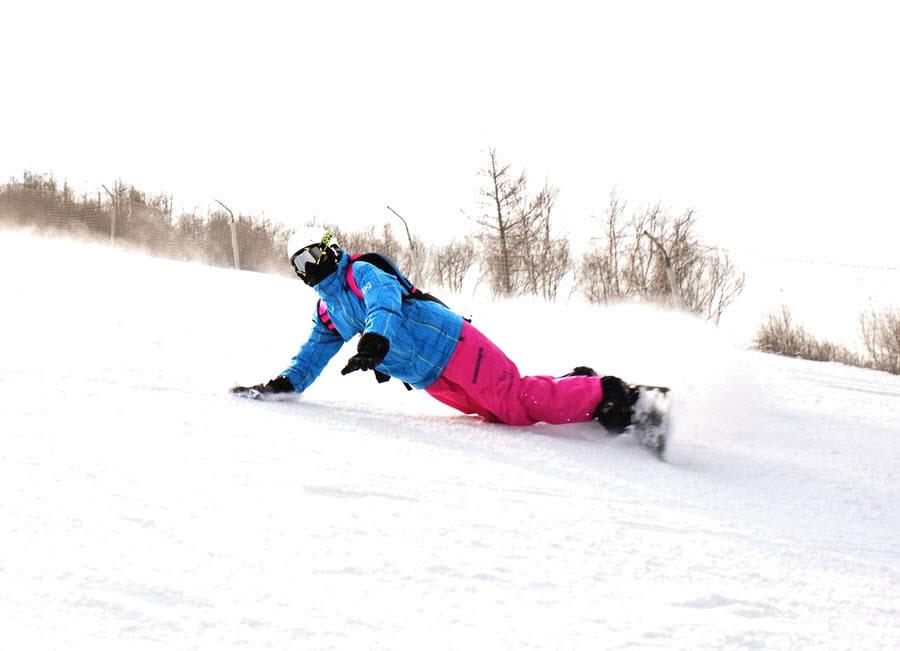 Snowboard Fever