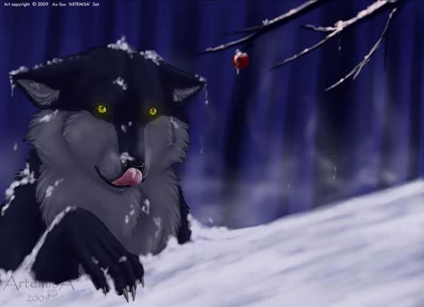 Winter Find
