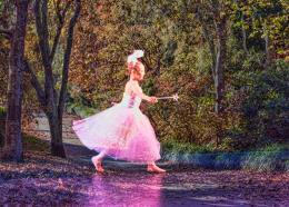 Fairyinthewoods