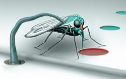 alien mosquito Picture