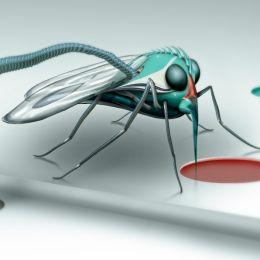 alienmosquito