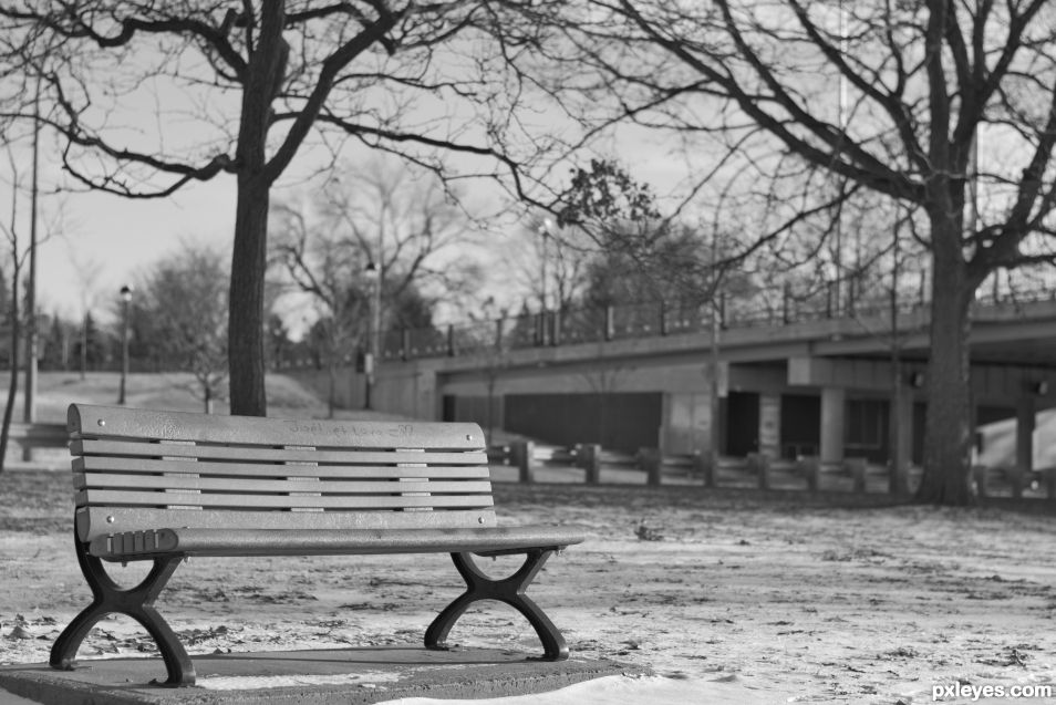Bench Monochrome