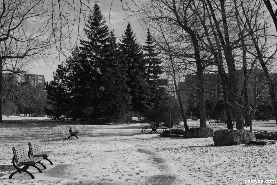 Park Monochrome