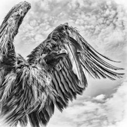 Eternal Flight