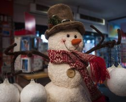 Hey, Mister Snowman! Picture