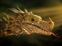 Fantasy Dragon Picture