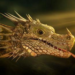 FantasyDragon