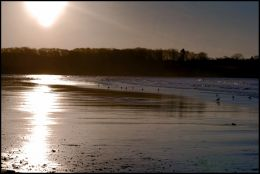 Beach at Dawn
