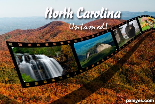 North Carolina Untamed!