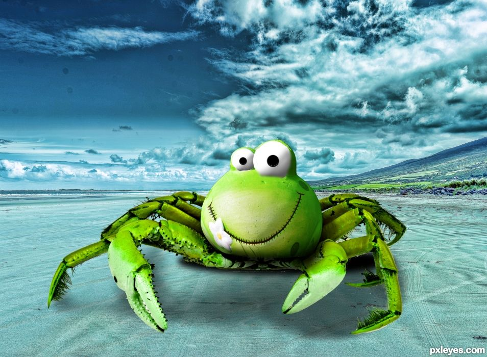 Froggy Crab