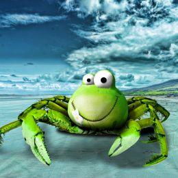 FroggyCrab