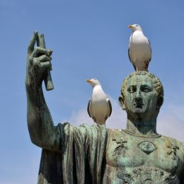 Theemperorandhisbirds