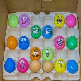Eggsfromthefunnyfarm