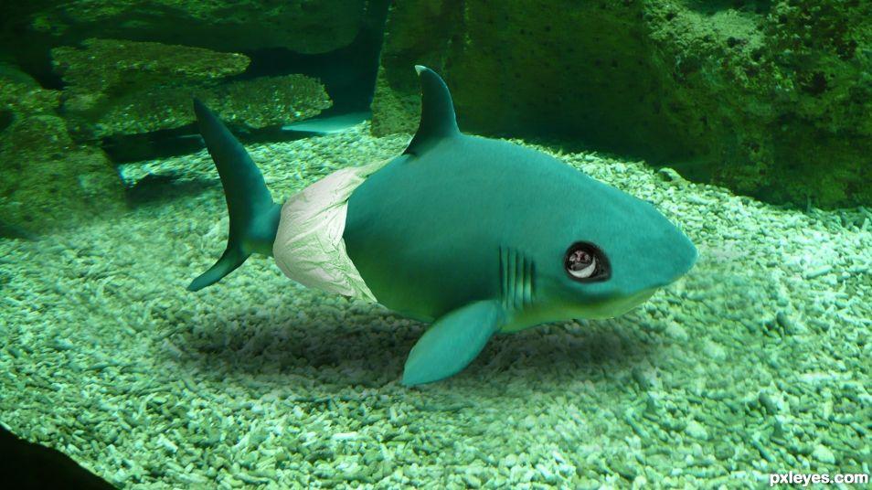 Baby Shark! (Doo doo da doo doo)