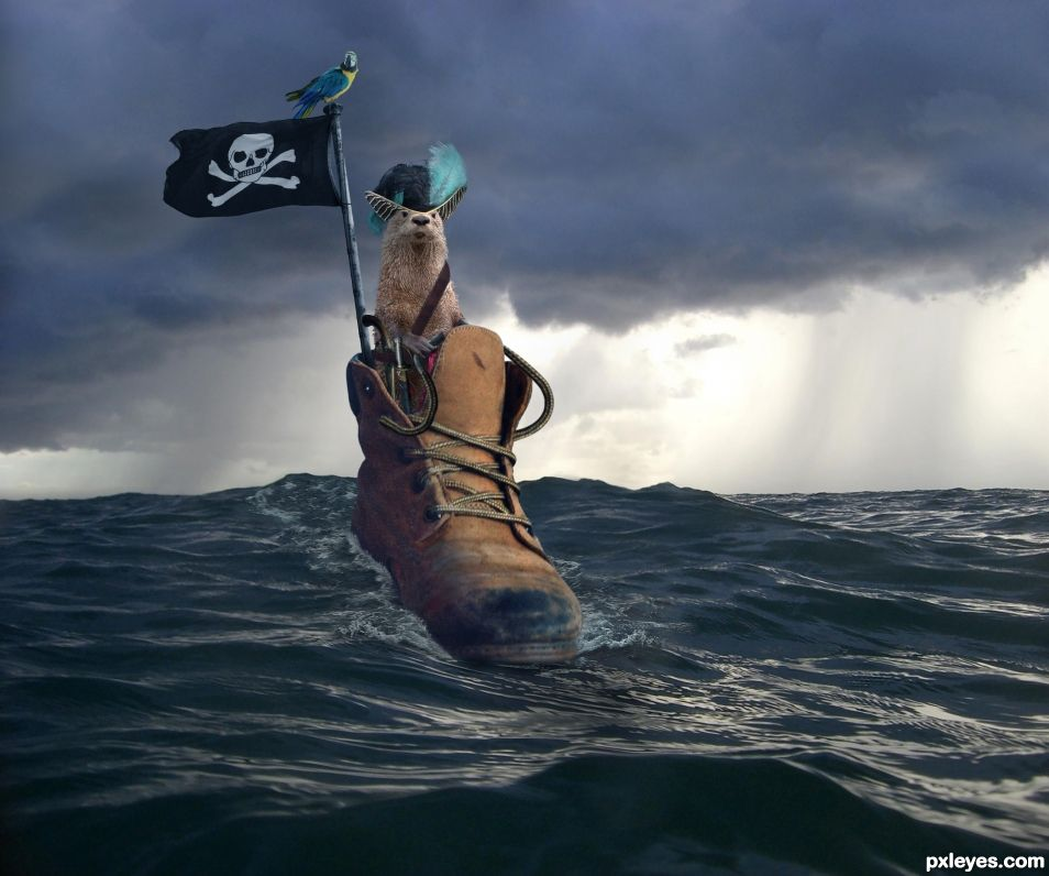 Pirate on the High Seas