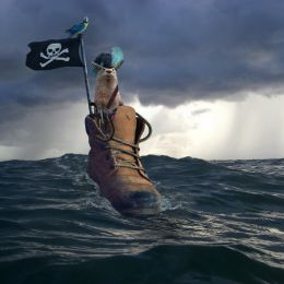 PirateontheHighSeas