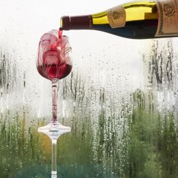 Ice + Wine Picture