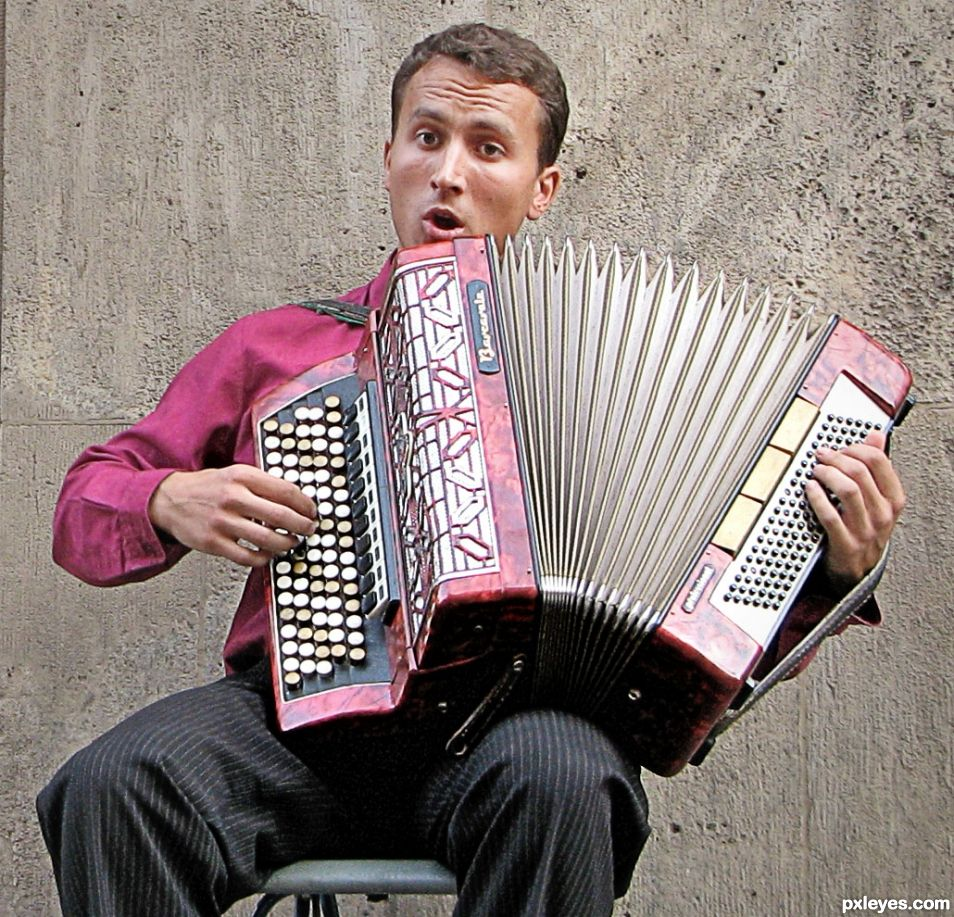 Ahh Another Accordian