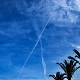 "sky ""X"" Picture"