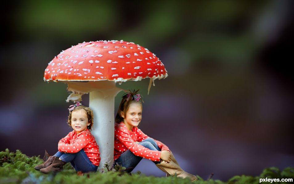 The Mushroom Sisters