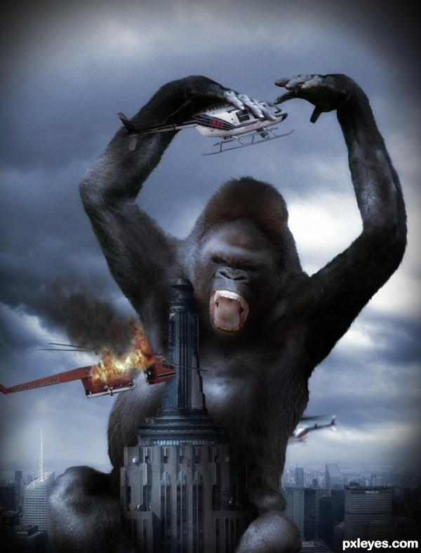 King Kong 2010 photoshop picture