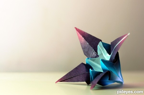 My origami iris
