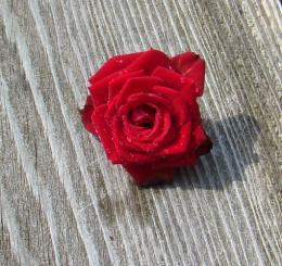 Rosedrops