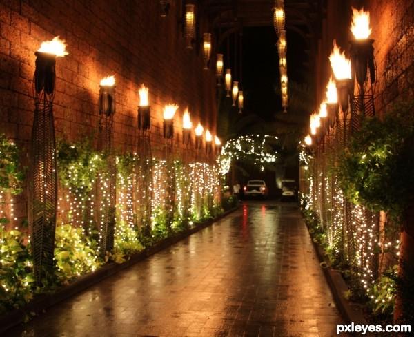 Alleyway Lights
