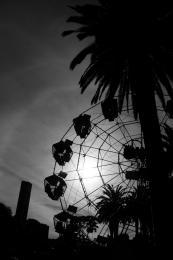 FerrisWheelinSilhouette