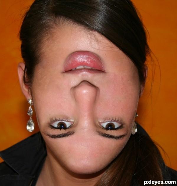Face Rotation
