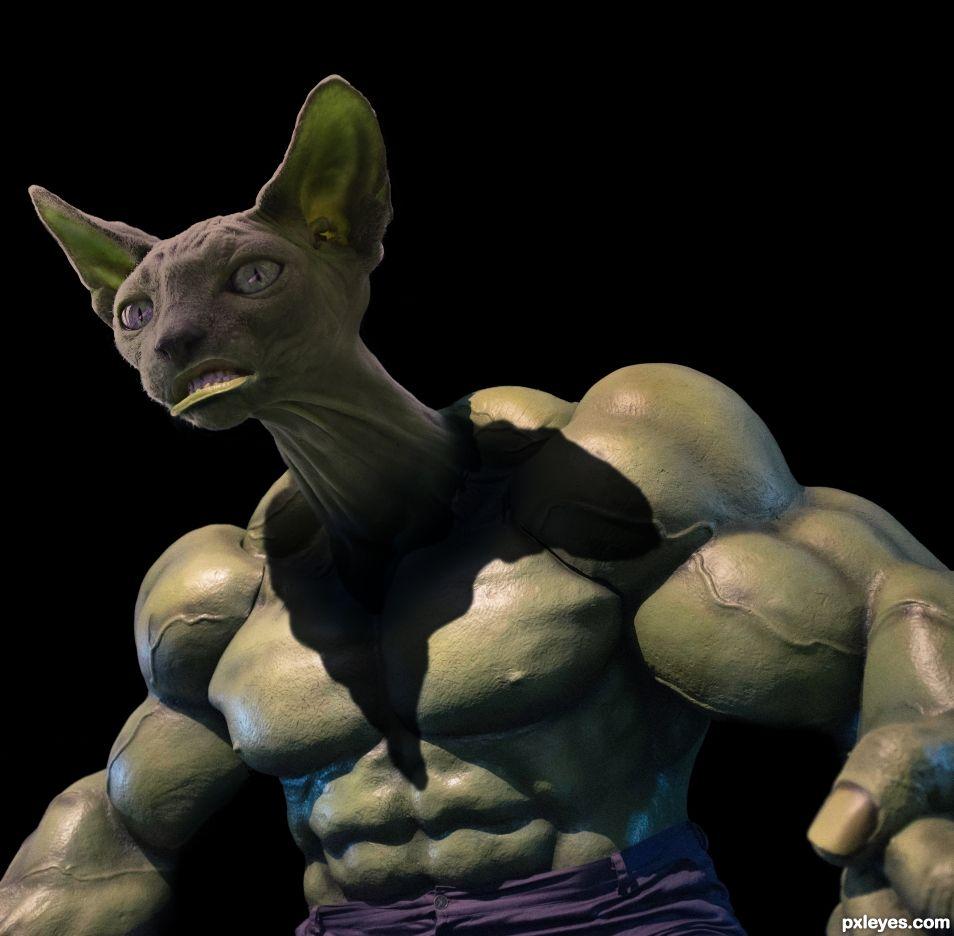Hulky Cat