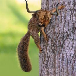 Squirryak
