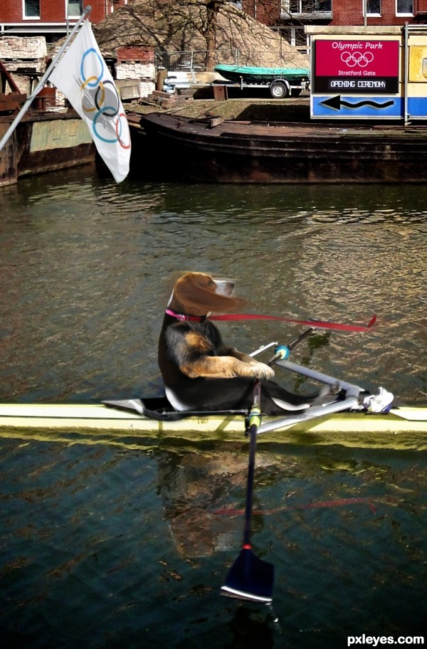 Rowing for Rawhides
