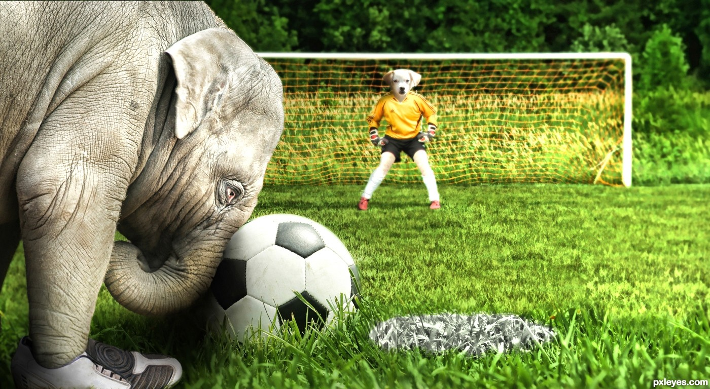 Penalty Kick!!... picture, by jordyponce for: animal ...