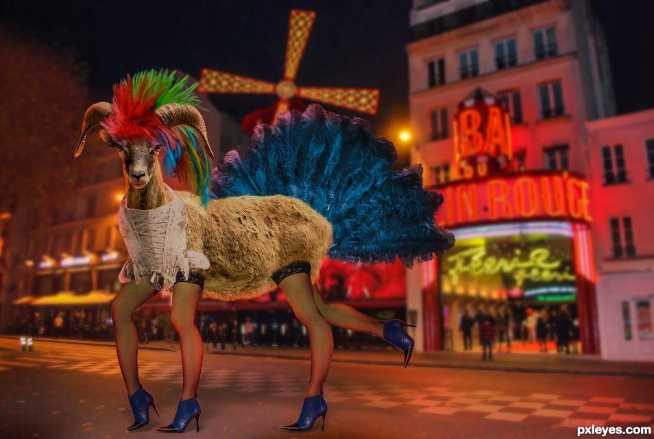 Mouflon Rouge