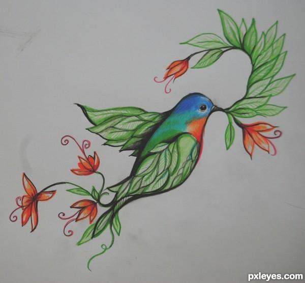 "bird of ""paradise"""