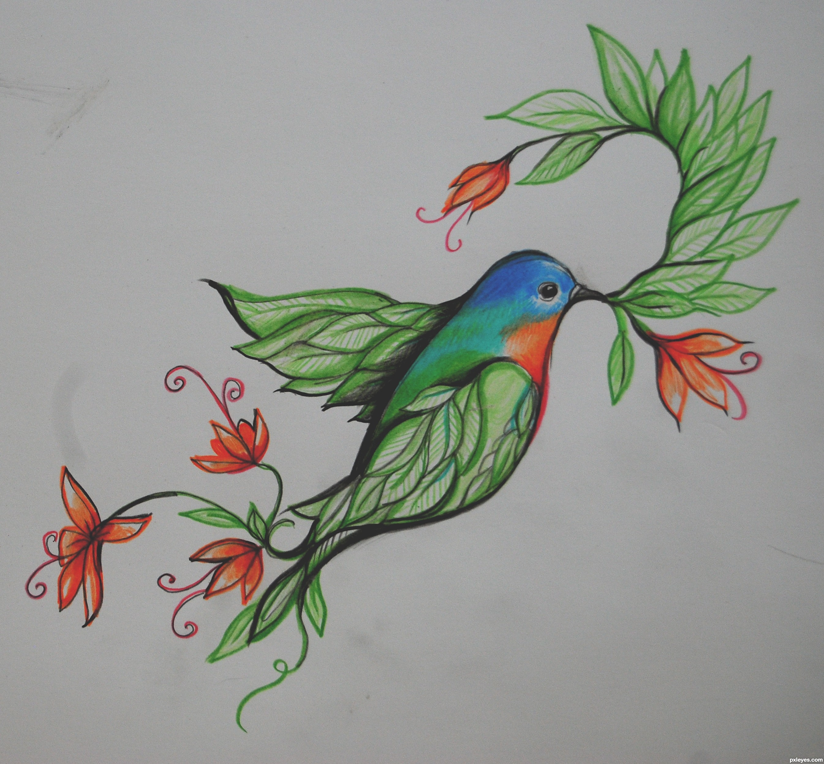 how to draw whimsical birds