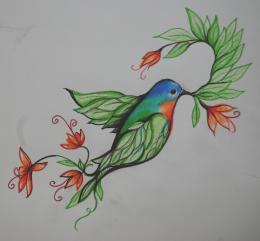 birdofquotparadisequot