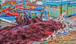 Commercial Fishermen