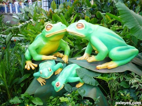 Froggy family