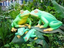 Froggyfamily