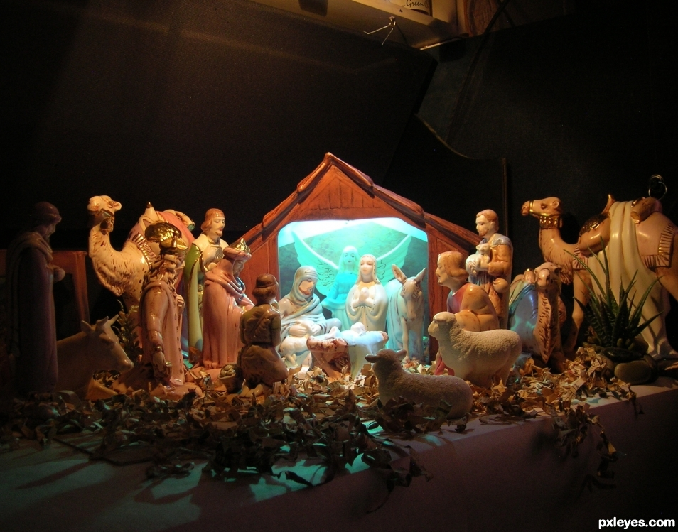 Nativity (behind the scenes)