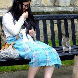 Feedingthesquirrel