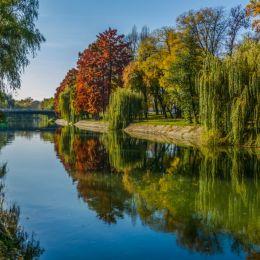 autumnalpicture