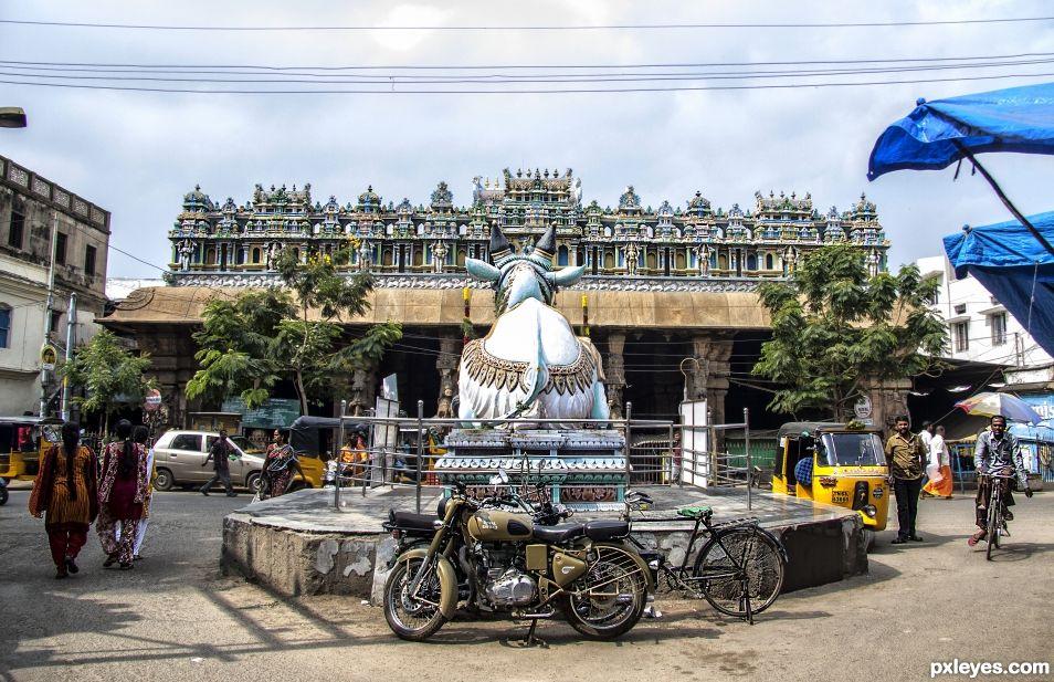 Nandi Bull and Motorbike