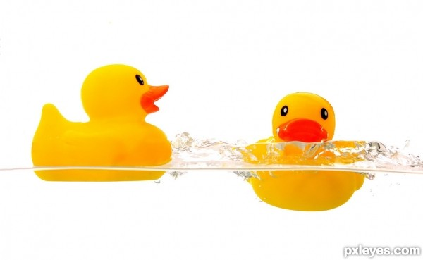 Rubber Duckie, Yer the one!