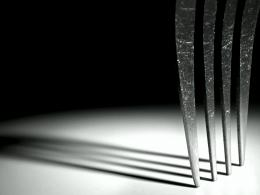 Just a poor fork Picture